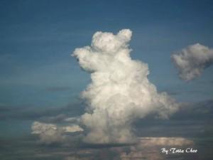 เมฆหมีน้อยคอยรัก-Tritaporn_Choosri