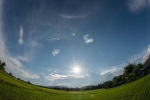 CZA-2013-07-07-1716-Suravech-1500x1001