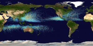Global_tropical_cyclone_tracks-800x400