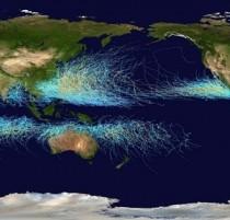 Global Tropical Cyclone Track