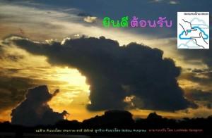 FB-ยินดีต้อนรับ-เมฆช้าง-แม่ลูก